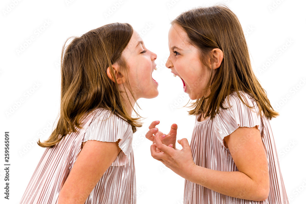 Fototapety, obrazy: Identical twin girls sisters are arguing yelling at each other.