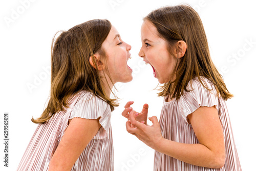 Fototapeta Identical twin girls sisters are arguing yelling at each other. obraz