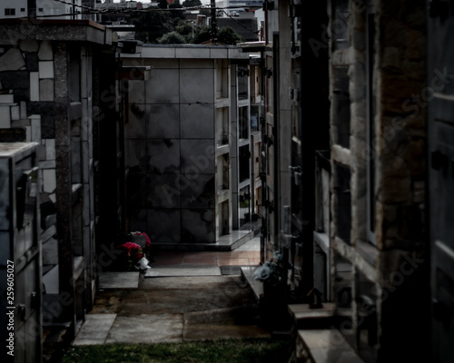 Canvas Prints Narrow alley Cemetery in a cloudy day/ Cemetery dark image