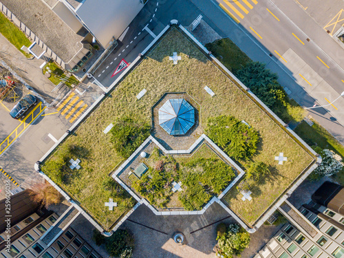 Fotografia Aerial view of rooftop garden in urban residential area