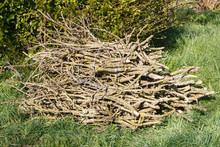 Heap Of Wood Faggots In A Gard...