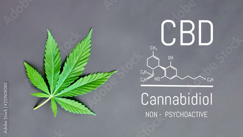 Photo  CBD Cannabis Formula