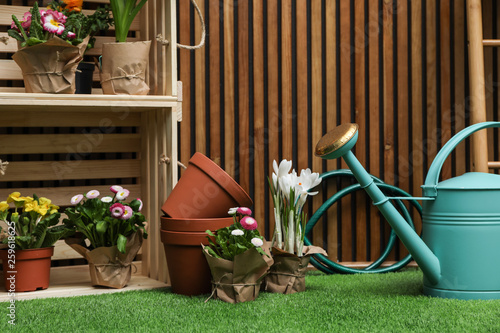 Composition with different gardening tools on artificial grass at wooden wall Canvas Print
