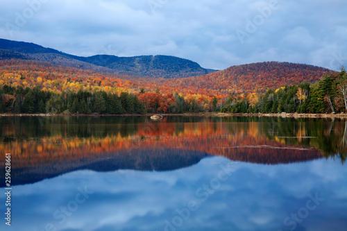 Fotografie, Obraz  Loon Lake