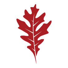 Red Oak Leaf Vector Logo Isolated. Logo Templates.
