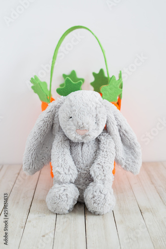 Easter Bunny and Carrot Basket