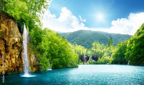 Photo sur Toile Rivière de la forêt Beautiful nature