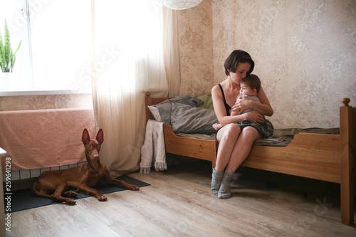 Fototapeta Mom with the baby and next to the dog, lifestyle obraz na płótnie