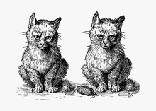 Vintage Cats Illustration