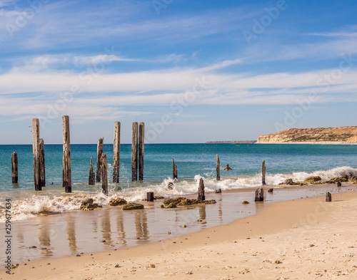 Poster Algérie Old wooden pier posts at Port Willunga beach, Adelaid, South Australia