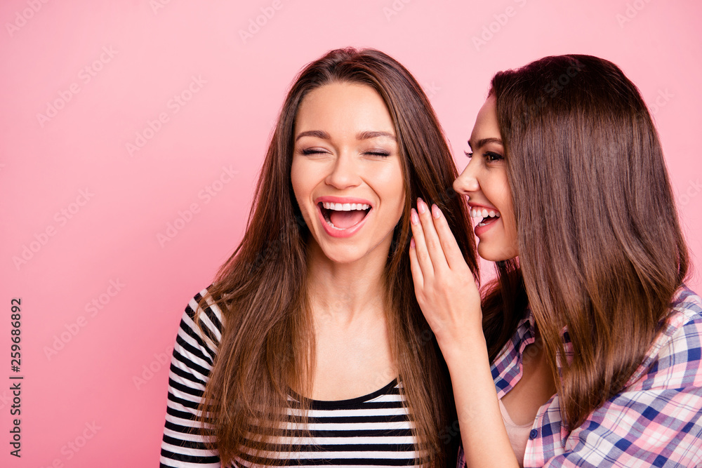 Fototapety, obrazy: Close-up portrait of nice-looking attractive winsome lovely cute charming girlish cheerful cheery straight-haired girls gossiping laughing mocking isolated over pink pastel background