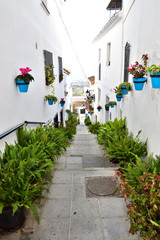 Pueblo blanco Mijas w Hiszpanii