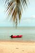 Petit bateau rouge dans la mer sous une feuille de palmier
