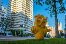Yellow Fire Hydrant In Urban S...
