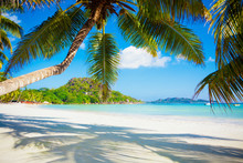Vacation Summer Holidays Background Wallpaper - Sunny Tropical Exotic Caribbean Paradise Beach With White Sand In Seychelles Praslin Island Thailand Style With Palms And Rocks