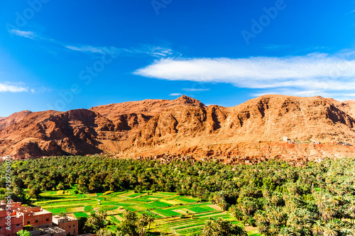 Panorama of the oasis Tinghir in Morocco