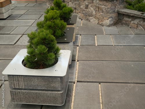 modern concrete loft style flower pots at city park Wallpaper Mural