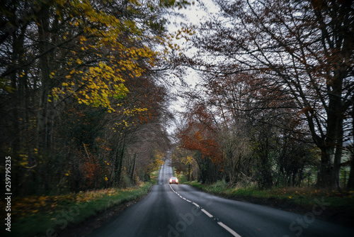 Fotografia  Country Road in England