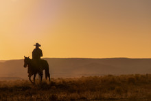 Lone Desert Cowboy Riding At S...