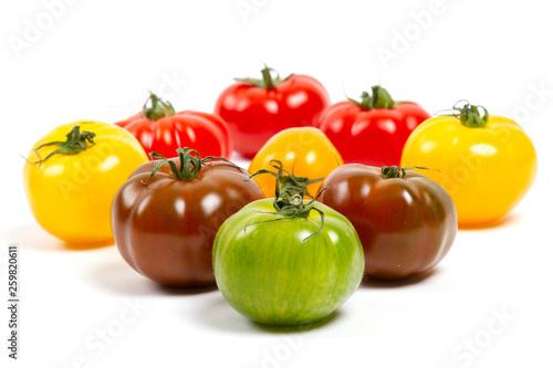 Obraz na plátně  assortiment de tomates anciennes colorées
