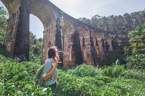 Fotografie, Obraz Woman looks at the Demodara nine arches bridge the most visited sight of Ella to
