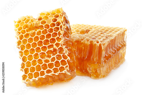 Honeycomb slice closeup on white Canvas Print