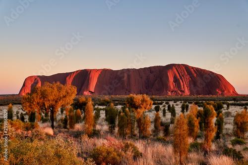 Foto auf AluDibond Landschaft Uluru Ayers Rock Australia