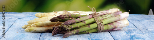 White and green asparagus on vintage old background. Canvas Print