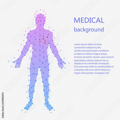 Obraz na plátně Medical background. Human anatomy.