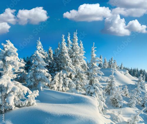 Fotografía Snowdrifts on winter snow covered mountainside