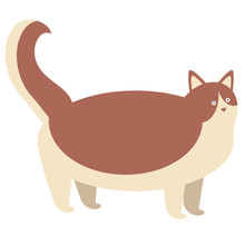 Brown Cat Flat Illustration On White