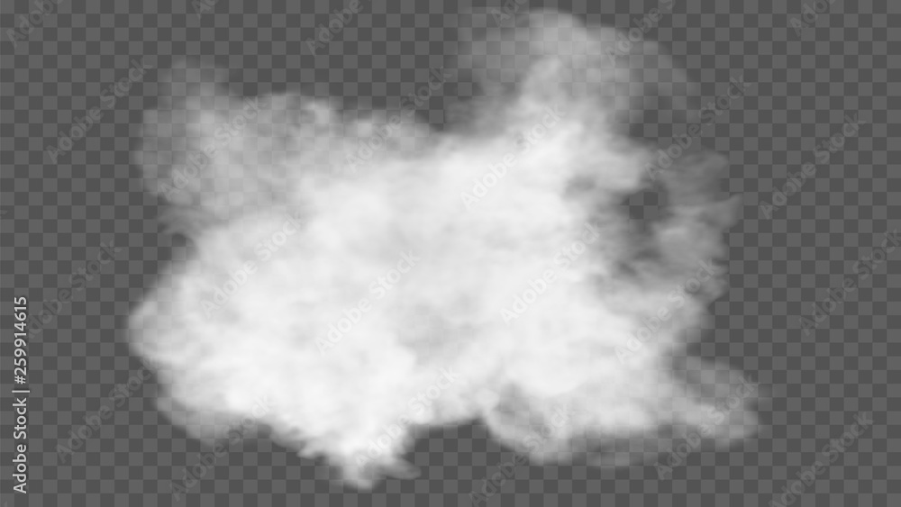 Fototapeta Transparent special effect stands out with fog or smoke. White cloud vector, fog or smog