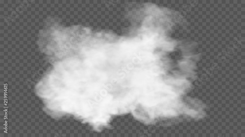 Fototapeta Transparent special effect stands out with fog or smoke. White cloud vector, fog or smog obraz