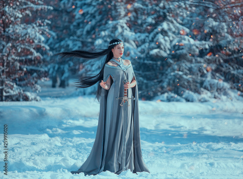 Fotografie, Obraz  charming attractive lady in snowy forest, militant elf princess with black long