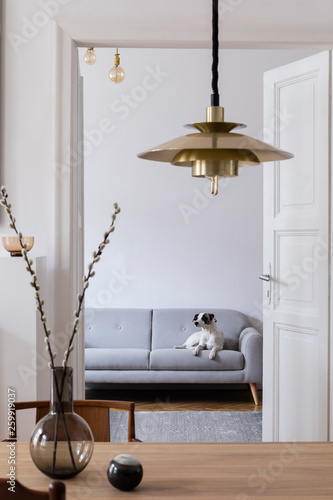 Stylish Scandi Interior Of Home Space With Design Wooden