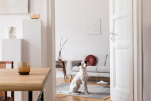 Stylish Scandi Interior Of Hom...