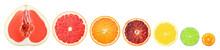 Citrus Slice Isolated On White Background, Pomelo, Grapefruit, Orange, Lemon, Lime, Kumquat, Clipping Path