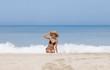 sexy brunette model in black bikini and blue hat on the beach