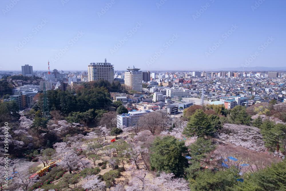 Fototapeta 宇都宮市 宇都宮タワーから見た八幡山公園と街並み