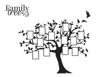 Family Tree Vector With Pictur...