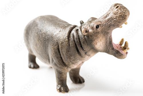 Obraz na płótnie Hippopotamus figurine on white background