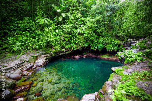 Fotobehang Groene Bassin Paradise lagoon in Guadeloupe