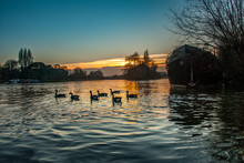 The Beauty Of The Kew Bridge River
