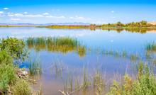 Lake Havasu National Wildlife Refuge In Arizona And California, USA
