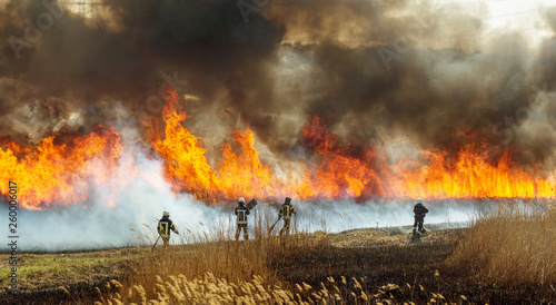 Photo Stands Fire / Flame Raging forest spring fires. Burning dry grass, reed along lake. Grass is burning in meadow. Ecological catastrophy. Fire and smoke destroy all life. Firefighters extinguish Big fire. Lot of smoke