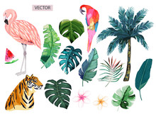 Set Of  Nature With Flamingo, Parrot, Tiger And Tropical Leaves. Vector Isolated Illustration