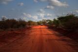 Fototapeta Sawanna - Tsavo West Kenya