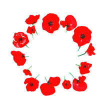 Watercolor Red Poppies Flower Wreath, Isolated On White Background. Hand Painted Floral Round Frame For Cards Design, Invitations, Symbol Of Remembrance Day, Anzac Day.