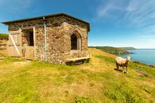 Alte Station Der Seenotrettung Im Süden Cornwalls Auf Einer Anhöhe Mit Einem Schaf
