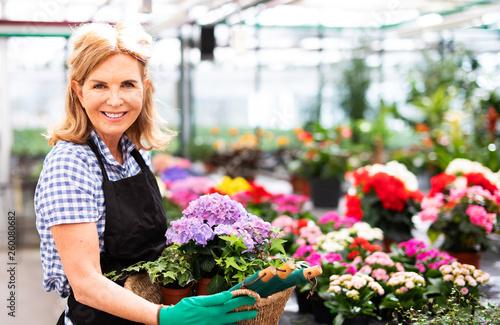 Photo  Sympathische attraktive Frau bei der Arbeit in eienm Blumenladen
